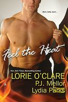 Fight Fire with Fire by Lorie O'Clare