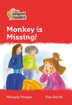 Monkey is Missing!