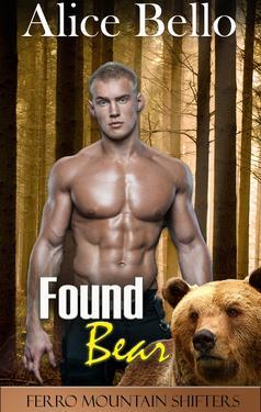 Found Bear