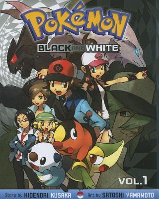 Pokemon Black and White 1