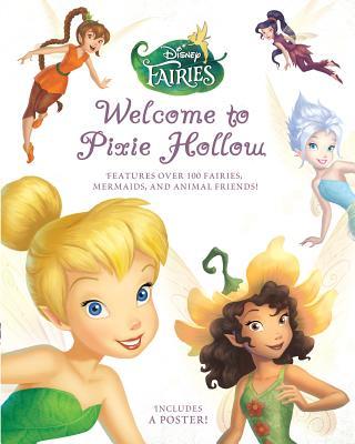 Meet the Fairies