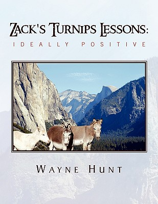 Zack's Turnips Lessons: Ideally Positive
