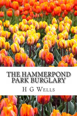 The Hammerpond Park Burglary