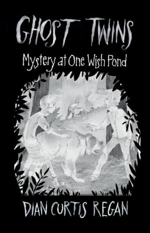The Mystery of One Wish Pond