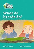 What do lizards do?