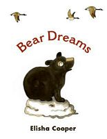 Bear Dreams