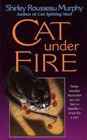 Cat Under Fire