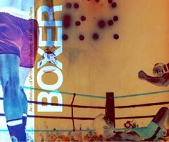 Boxer: An Anthology of Writings on Boxing and the Visual Arts