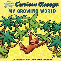 Curious Baby My Growing World