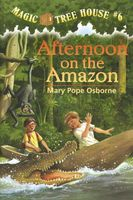 Afternoon on the Amazon