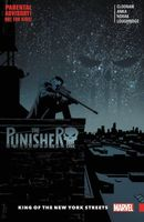 The Punisher, Vol. 3: King of the New York Streets