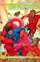 Superman: Nightwing and Flamebird Vol. 2