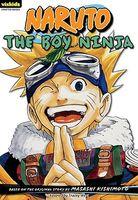The Boy Ninja