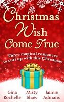 Christmas Wish Come True