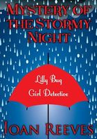 Mystery of the Stormy Night