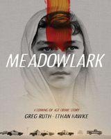 Meadowlark: A Graphic Novel