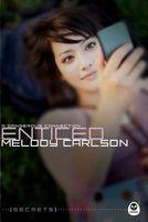Enticed: A Dangerous Connection