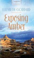 Exposing Amber