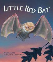 Little Red Bat
