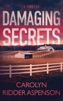 Damaging Secrets