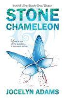 Stone Chameleon