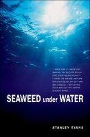 Seaweed Under Water