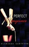 Perfect Vengeance