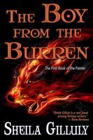 The Boy From the Burren