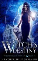 A Witch's Destiny